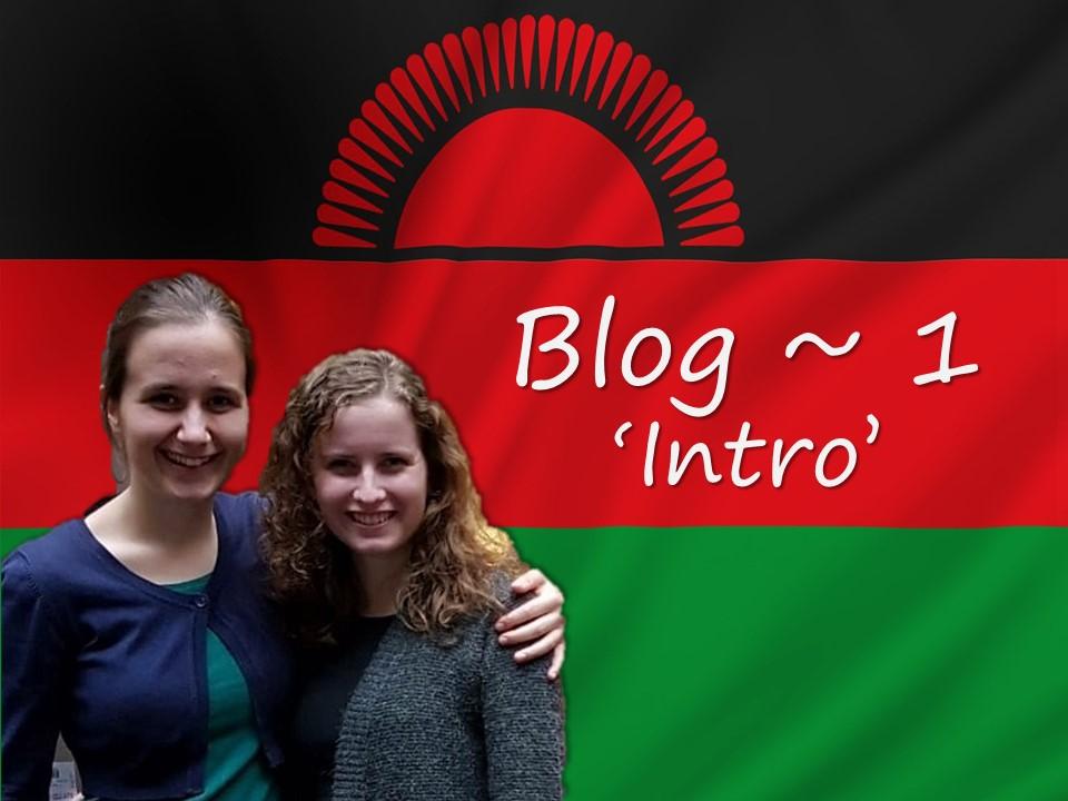 Blog #1 – Gerdine en Mirelle naar Malawi