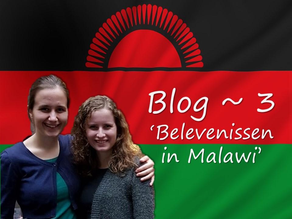 Blog #3 – Gerdine en Mirelle in Malawi
